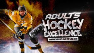 Adult Ice Hockey Lessons